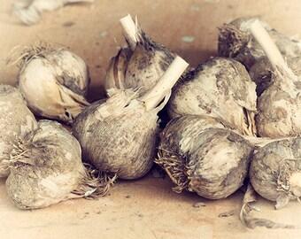 Garlic Photograph, Sepia Food Photography, Farmhouse Art,  Rustic Decor, Kitchen Wall Art