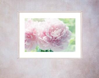 Printable Pink Peony Art,   Peony Photograph, Large Flower Art, Peony Fine Art Print, Pink Bedroom Wall Decor