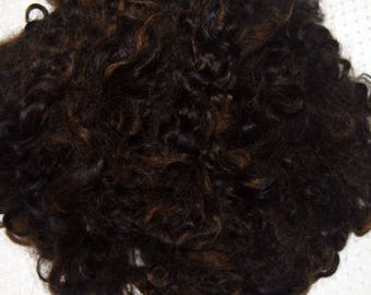 Wool Doll Hair, Cotswold Wool Locks, Locks for Spinning and Felting, needle felting Dark Brown with Black Highlights  1 oz.