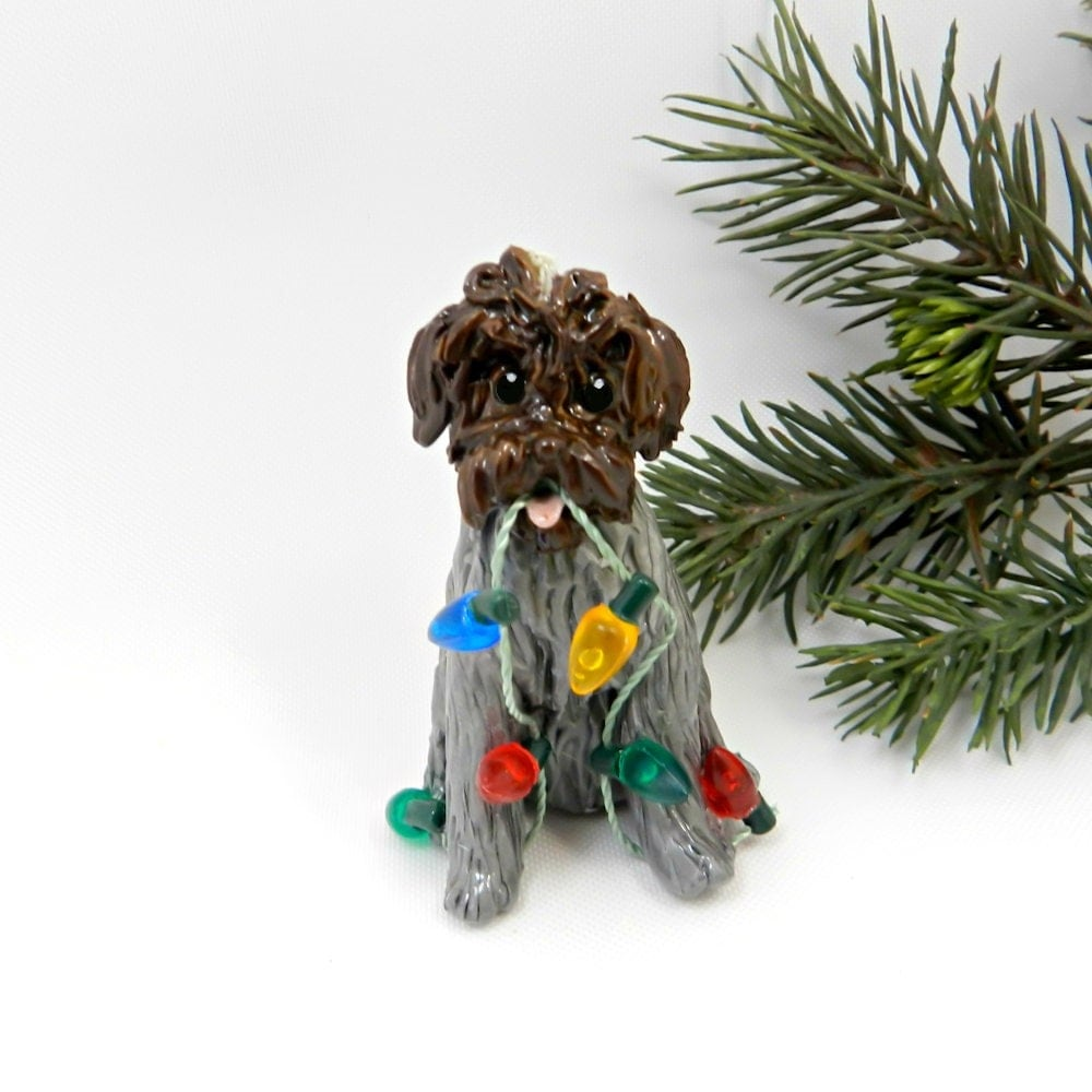 Magnificent My Wirehaired Pointing Griffon Contemporary - Wiring ...