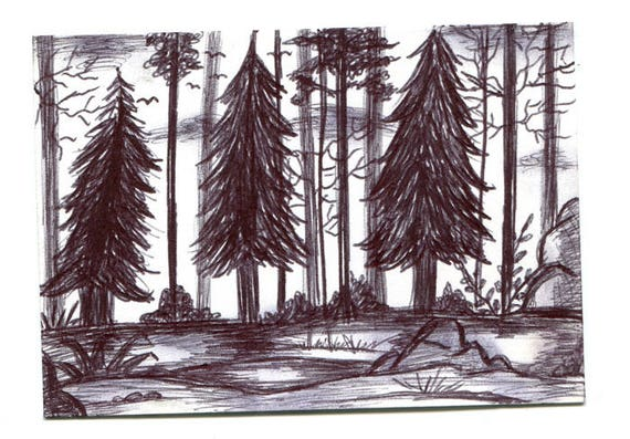 forest trees landscape Aceo drawing sketch ORIGINAL art ink art ACEO art card ATC artist trading card