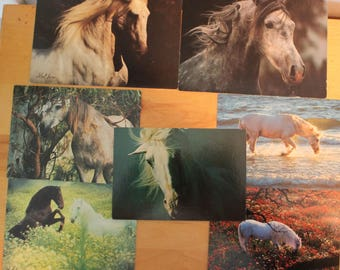 beautiful horse postcard collection,horse image ephemera kit,Craft pack for scrapbooks,horse postcards,smash book, collage,G-10,robert vavra