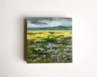"""Carrizo Plain Wildflowers  • original oil painting 5x5"""""""