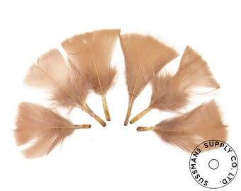 "Turkey Feathers - Handpicked Loose Turkey Marabou Feathers - Brown - 2""-4"" (12pcs)"