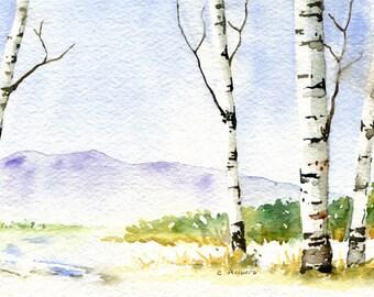 Pasture in the Snow Painting Original Watercolor
