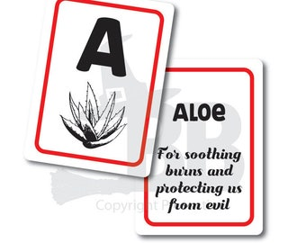 ABC Herbs Flash Cards - Digital