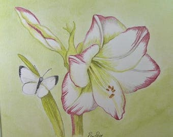 Original Painting - Framed Watercolor Painting of Amaryllis Flower