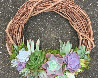"""14"""" Living Succulent Wreath (made to order)"""