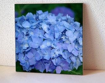 Hydrangea ceramic tile, floral trivet, flower, gift for gardener, home decor, kitchen decor, housewarming gift, Christmas gift for her 334