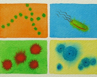 Beautiful Bacteria - original watercolor painting - microbes