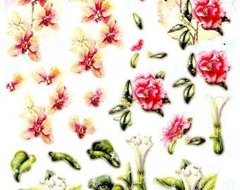 115 - 1 leaf studio light images die cut flowers