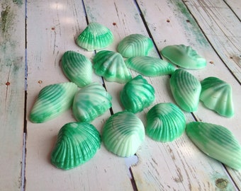 Shell Soap, Set of 15 Seashells, Nautical Soap, Ocean Soap,3d Soap, Bath Soap, Gift Soap, Novelty Soap, You pick scent and color