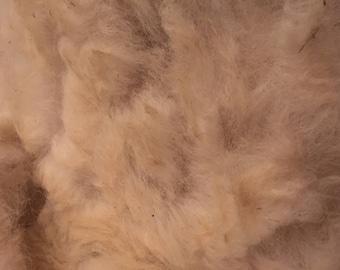 White Raw Alpaca Fleece 4 or 6oz Spinning Fiber from Colorado Alpacas