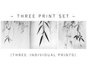 minimalist print set, black and white print set, minimalist photography, black and white print set, photography, zen, spa, willow