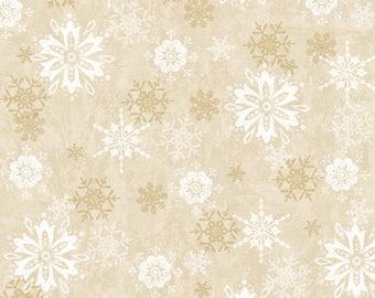 Winter Joy, Tone on Tone, Snowflakes, Snow