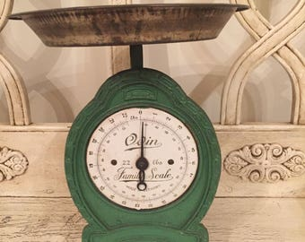 Vintage Odin 22 pound Family Scale -  - Jade Green Made in Germany - Up-cycled!