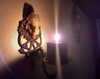 Real Otter Skull Wall Sconce with Black Candle