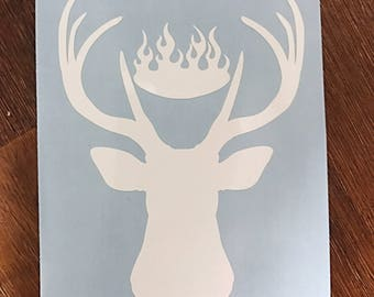 ToG Amulet of Orynth decal Sarah J Maas