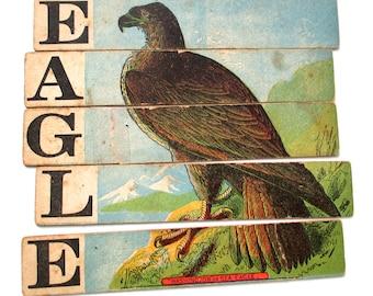 Antique Bird Puzzles, 1880s, Eagle, Swan, Jay, Peacock
