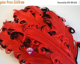 ON SALE 1 Curly Nagorie Feather Pads - Goose Feather Pad - Red & Black - DIY headband hair clip hat - wedding supplies - newborn photo prop
