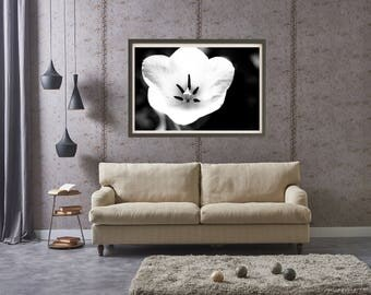 Pure Bliss Flower Black & White Digital Download