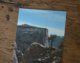 Cliff tree, Zion National Park, Utah- flat card, post card