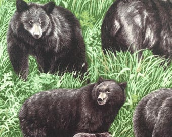 Black Bears on green grass