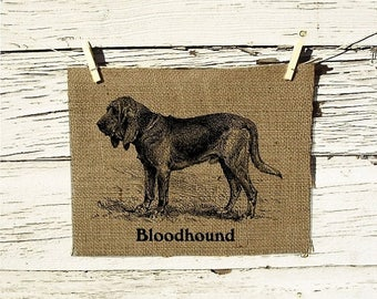Sale Bloodhound Vintage Art on Burlap Wall Decor