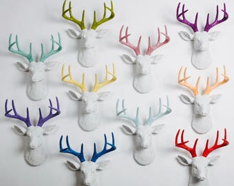 OVERSTOCK SALE - Collection of Mini Deer Heads - While Supplies Last - Price Per Deer