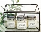 Garden Candle Collection • 9 Scents • Soy Candles • 8oz Jar • Farmhouse • Cucumber • Lavender • Blackberry • Pomegranate • Grapefruit