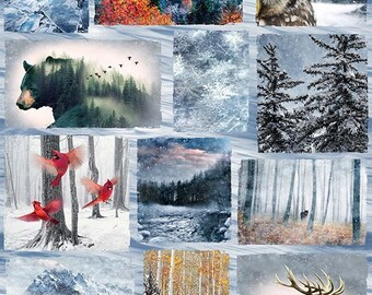Hoffman Fabric, Call of the Wild, Frost, Digital Print Panel, Wildlife Animal Collage, 100% cotton