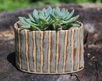 Ceramic Planter. Succulent Planter. Small Oval Planter.