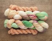 Sun Bleached heel/toe sock set - superwash merino/nylon sock yarn (463 yd skein w/matching 100 yd skein)