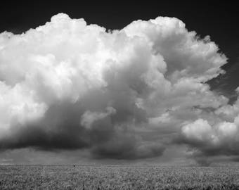 large clouds over wheat field