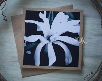 Floral Photo Card - Magnolia stellata - Less colors, more feelings..