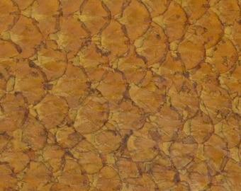 authentic Carp exotic fish skin leather Straw Hut Tan glazed hide DE-59598 (Sec. 1,Shelf 10,D)