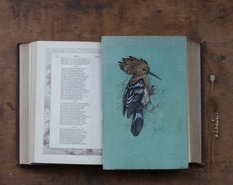 Hoopoe Bird Painted on Antique Book Cover - Beautiful Piece