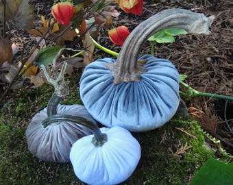Handmade Plush velvet pumpkins with real dried stems. 3 Neutral colors:  Gray, Champagne