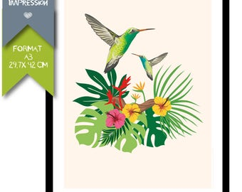 A3 - Paper poster - Collection - bird-Hummingbird - tropical exotic Palm tree tropical-inspired, tropical trend - B