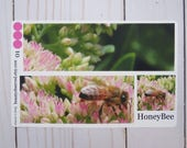 Honey bee on sedum full box photo planner stickers for life, daily, weekly, and monthly planners, pink, yellow, green, matte, fall, autumn