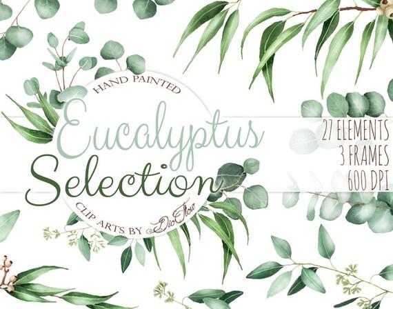 Watercolor eucalyptus clipart greenery clip art eucalyptus for Watercolor greenery