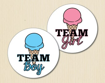 Ice Cream Gender Reveal Party Stickers, What's the Scoop, Team Boy, Team Girl, Summer Baby Shower Stickers, Team Pink Labels, Team Blue