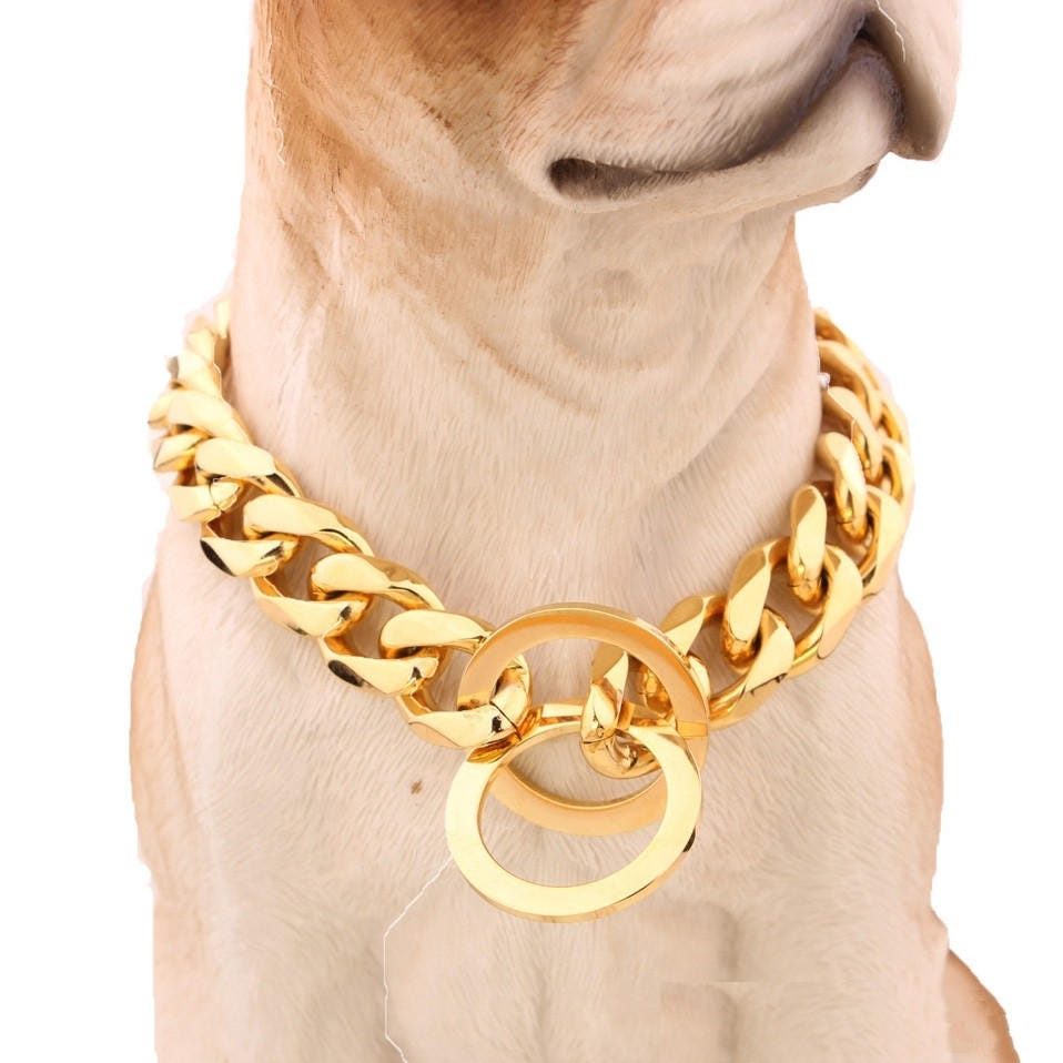 Gold Necklace Dog Collar