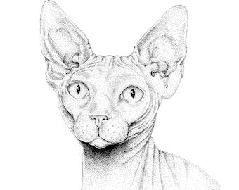 Sphynx Cat - Original Drawing / Illustration