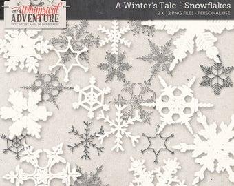 Glitter Ice Crystal, Winter Wonderland, Snow Queen, Digital Scrapbook Supplies, Instant Download, Silver Snowflake Images, Vintage Crystals