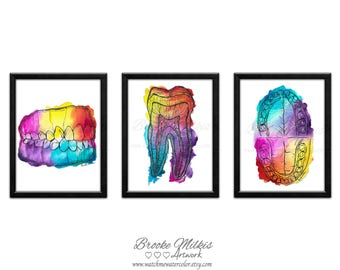 Anatomy Artwork, Gift For Doctor, Dental Artwork, Gift For Nurse, Teeth Anatomy, Watercolor Art, Doctors Office Decor, Dental Anatomy Art