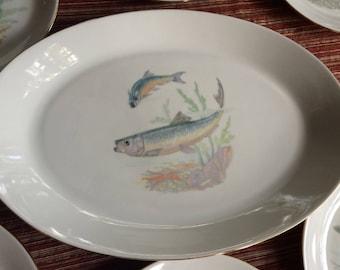 MZ Czechoslovakia,Fish Plate Set,Fish Platter,Antique Fish Plate,Trout Plate,Czech Plate,Trout Platter,Fish Dish,Fish Plate,Fish Dinnerware