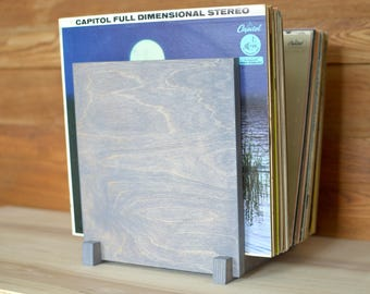 "Vinyl Record Album Storage | Album Display | 12"" Vinyl LP Display 