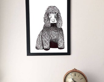 Framed Welsh Water Spaniel Drawing, Artwork Print, A4/A3 Dog Picture