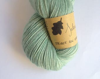 Saleccia - Skein of baby alpaca hand dyed